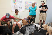 June 22, 2014 - St. Petersburg, Florida, U.S. - MELISSA LYTTLE | Times.Dogs and humans socialize at the SPCA of Tampa Bay's indoor dog park, which is open every Sunday from 11:30 a.m. to 1:30 p.m. Jim D'Alessandro and Marilyn Weeks of Unincorporated Pinellas County (couple on the left) usually take their 6-month old Jack Russell terrier Ali to the Walsingham dog park, but love this as an option. While Nancy and Joe Lane of South Pasadena (standing, right) said this is their first Florida summer and they can't even take their 6-year-old wire-haired fox terrier Baxter to the dog parks anymor -Stock Image- E58TAH
