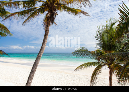 Palms and white sand at the Mayan Riviera beach of Tulum, Mexico.
