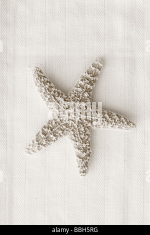 Black and White image of starfish on linen background