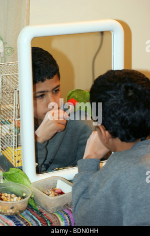 Reflection in a mirror of a young boy feeds a parrot on his shoulder