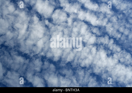 "Cloud Formation - ""Mackerel Sky"""