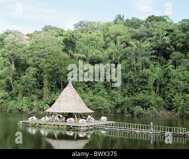 Amazon near Manaus Brazil South America raft hut scenery tributary rain forest footbridge