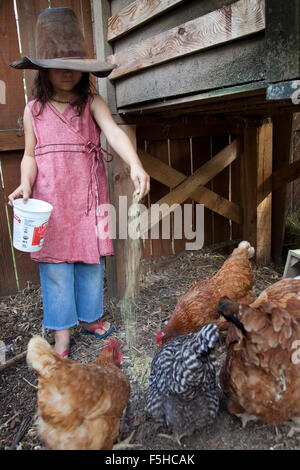 young girl with big old hat covering her eyes feeds chickens out of a plastic container in enclosure