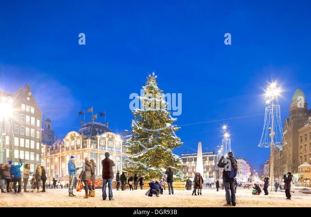 amsterdam-christmas-tree-w-snow-xmas-lig