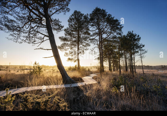 Have You Found Any Alamy Images March 2015 Ask The