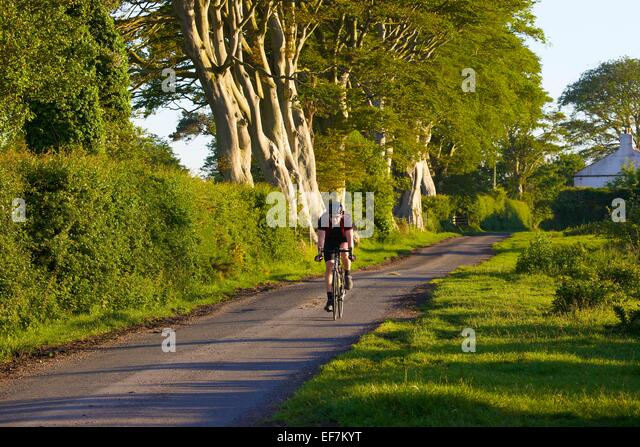 cyclist-on-the-hadrians-cycleway-route-n