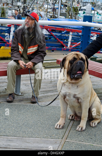 asian-man-sits-with-his-large-english-ma
