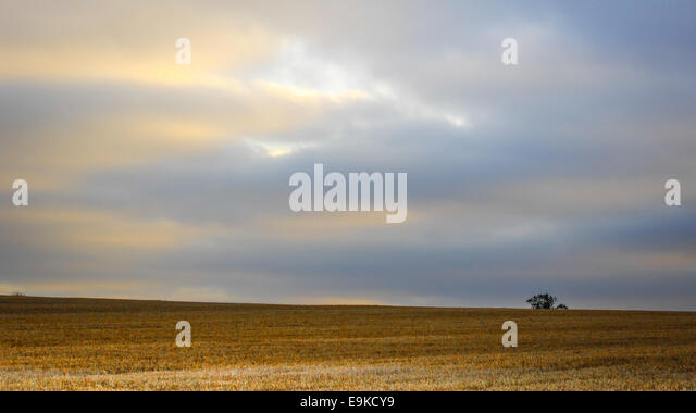 countryside-view-looking-over-fields-in-