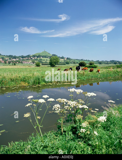 river-brue-with-glastonbury-tor-in-the-d