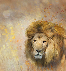 Digital Painting Of African Lion - Stock Photo