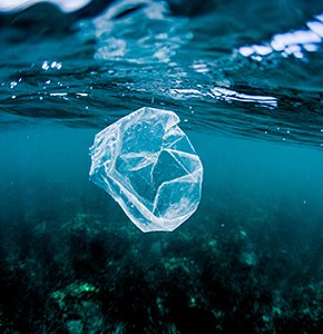 Plastic bag floating over reef in the ocean, Costa RicaStock Photo Stock Photo