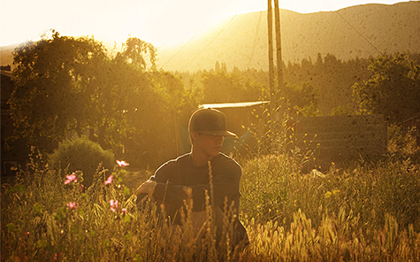 Boy in a field at the sunset golden hour - Stock Photo
