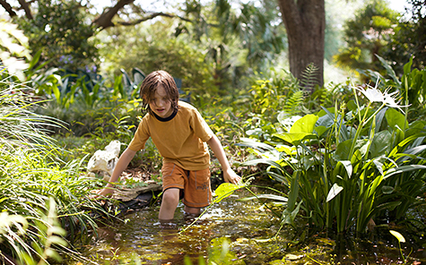 A boy wades knee deep in a small pond in a lush green setting. - Stock Photo