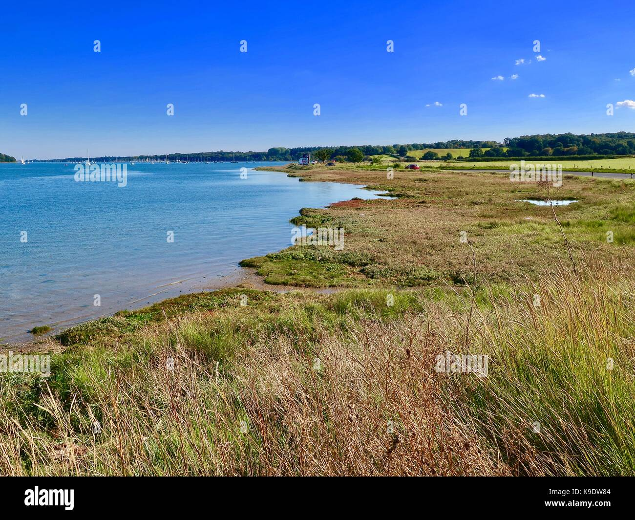 view-of-the-river-orwell-at-wherstead-lo